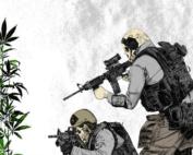 guerra as drogas