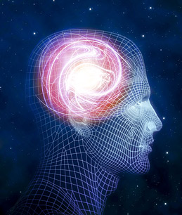 brain_science_1212