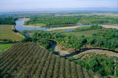 Watercourses and riparian corridors are important areas to protect and restore to maintain habitat connectivity in a region. Conservation banks are an ideal way to conserve or restore riparian habitats along the edges of agricultural lands.