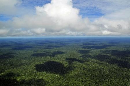 amazonia-deserto-verde