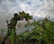 guerra contra as drogas