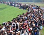 imigração livre
