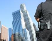 segurança e ordem anarcocapitalismo